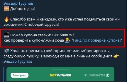 Как работает Телеграмм каппер Эльдар Тусупов