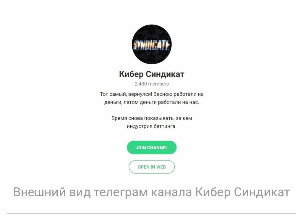 Телеграмм Кибер Синдикат