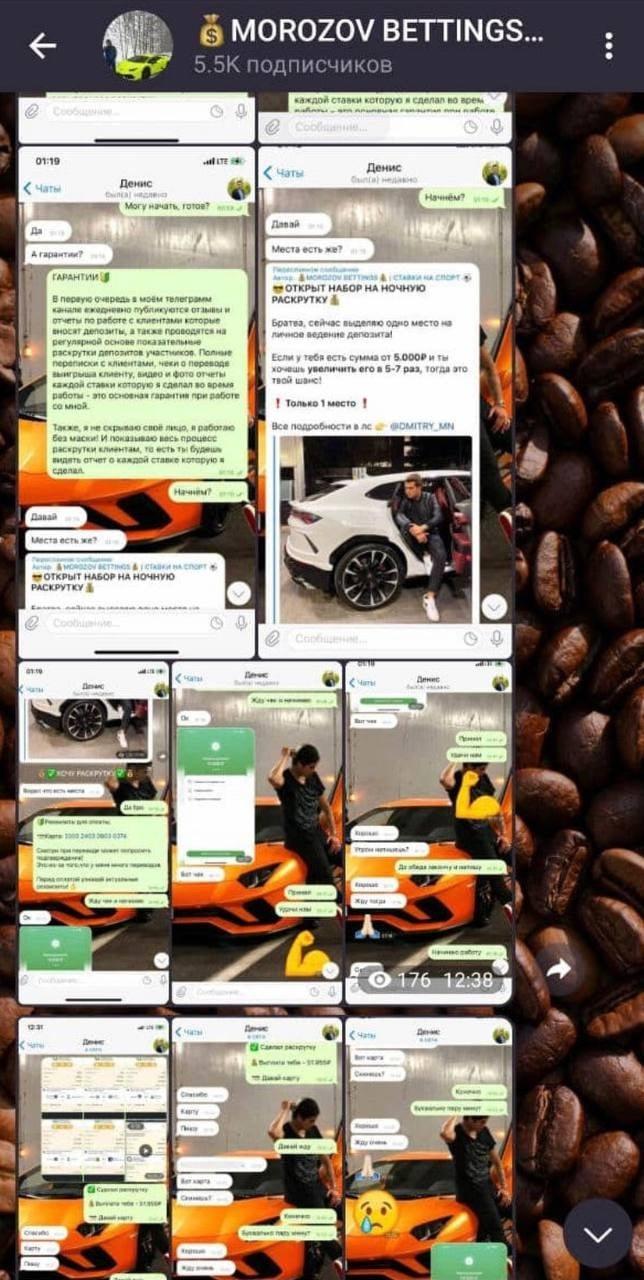MOROZOV BETTINGS Телеграмм - отзывы